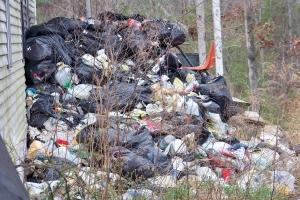 trashy yard_300